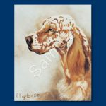 English Setter – 6 pack Note Cards–0