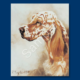 English Setter - 6 pack Note Cards--0