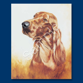 Irish Setter – 6 pack Note Cards-0