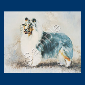 Shetland Sheep dog - List Pad & Magnet Combo-0