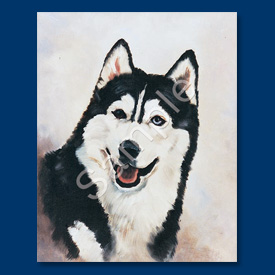 Siberian Husky - 6 pack Note Cards-0