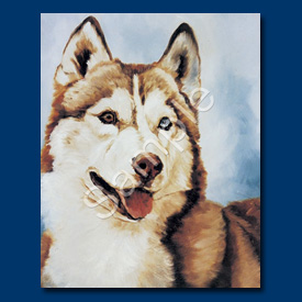 Siberian Husky - 6 pack Note Cards--0