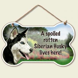 A Spoiled Rotten Siberian Husky Lives Here - Hanging Sign-0
