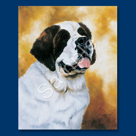 Saint Bernard - 6 pack Note Cards-0