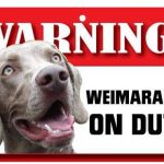 Weimaraner Warning Sign-0