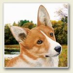 Welsh Corgi - Stone Coaster-0