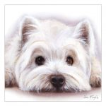 West Highland Terrier –  Watercolour Blank Card-0