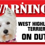 West Highland Terrier Warning Sign-0