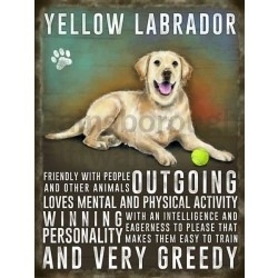 Labrador (yellow) – Hanging Metal Sign-0