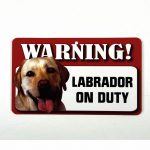 Yellow Labrador Warning Sign-0