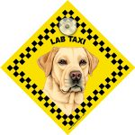 Yellow Labrador (taxi) Suction Sign-0