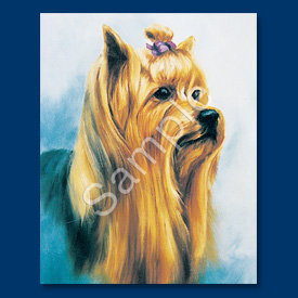 Yorkshire Terrier - 6 pack Note Cards-0