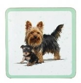 Yorkshire Terrier - Coasters-0