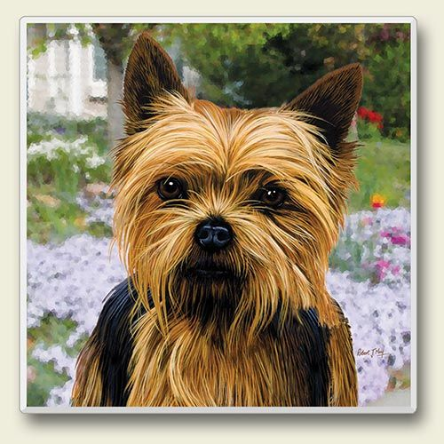 Yorkshire Terrier – Stone Coaster-0
