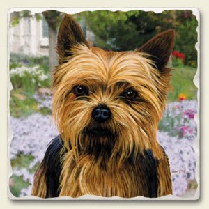 Yorkshire Terrier - Tumbled Stone Magnet-0