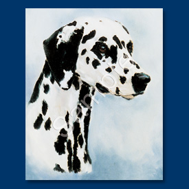 Dalmatian - 6 pack Note Cards-0