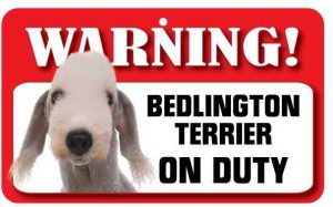 Bedlington Terrier Warning Sign-0