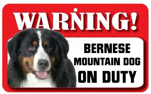 Bernerse Mountain Dog Warning Sign-0