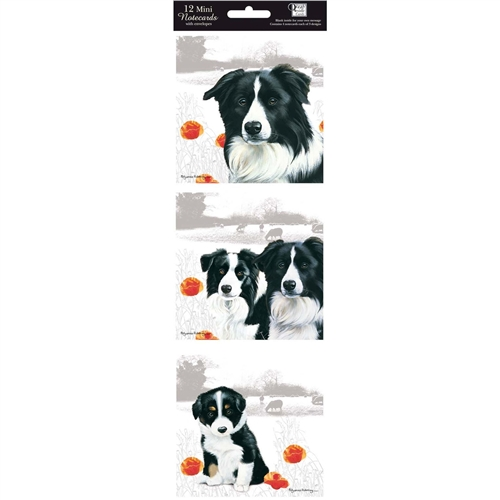 Border Collie Notecard Pack-0