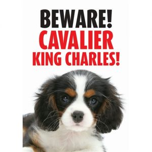 Cavalier King Charles Spaniel Gate/Door Sign - Beware -0