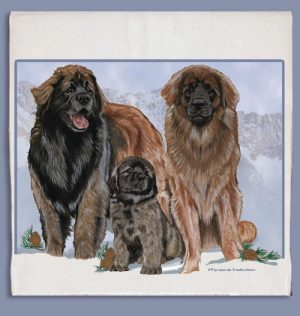 Leonberger Kitchen Tea Towel-0