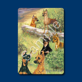 Miniature Pinscher - Deck of Playing Cards-0