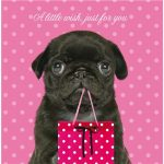 Pug Little Wish - Birthday Card-0