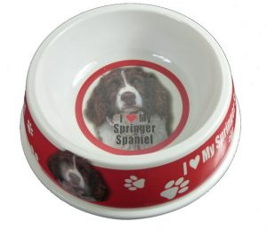English Springer Spaniel Feeding Bowl-0