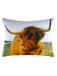 Scottish Highland Cow Cushion Cover-0