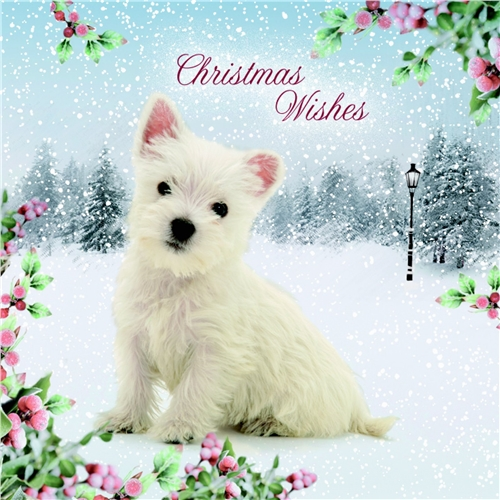 West Highland Terrier – Christmas Card-0