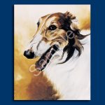 Borzoi- 6 pack Note Cards--0