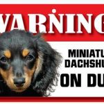 Dachshund Long Haired Warning Sign-0