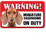 Dachshund Smooth Warning Sign-0