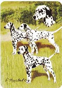 Dalmatian- Deck of Playing Cards-0