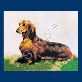 Dachshund - List Pad & Magnet Combo-0