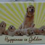 Golden Retriever Family- Magnet-0