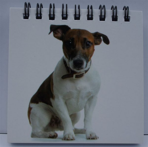 Jack Russell Spiral Notepad-0