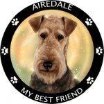 Airedale Terrier My Best Friend Magnet-0
