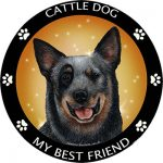 Australian Cattle Dog My Best Friend Magnet-0