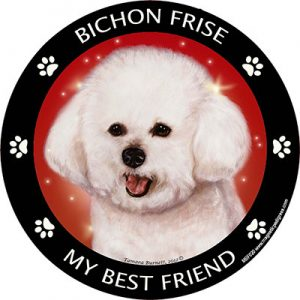 Bichon Frise My Best Friend Magnet-0