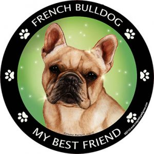 French Bulldog My Best Friend Magnet-0