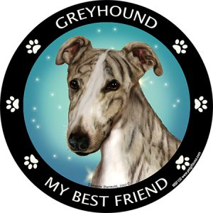 Greyhound My Best Friend Magnet-0