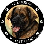 Leonberger My Best Friend Magnet-0