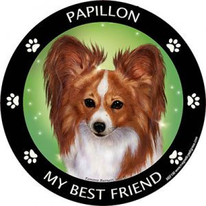 Papillon My Best Friend Magnet (Red & White)-0