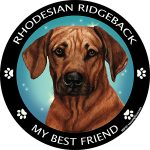 Rhodesian Ridgeback My Best Friend Magnet-0