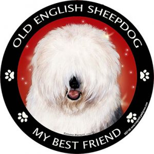 Old English Sheepdog My Best Friend Magnet-0