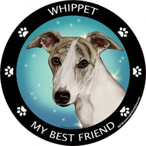 Whippet My Best Friend Magnet-0