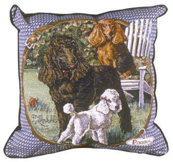 Poodle – Tapestry filled cushion-0