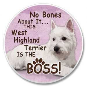 West Highland Terrier - Car Coaster-0