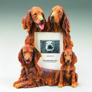 Irish Setter Photo Frame--0